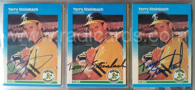 Terry Steinbach 1987 Fleer #405